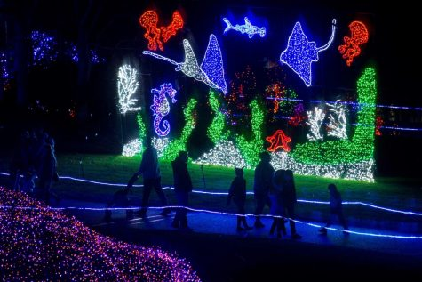 Zoolights runs from 5-9 p.m. through Jan. 3 at Point Defiance Zoo in Tacoma.